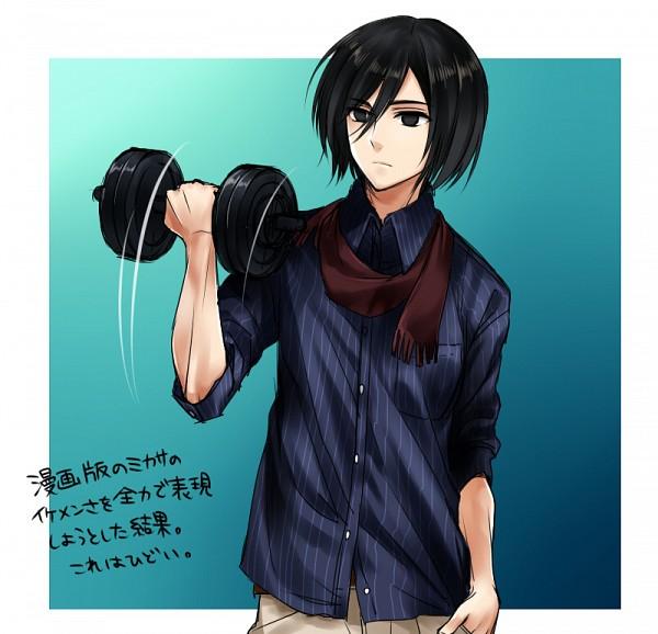Mikasa.Ackerman.600.1511507